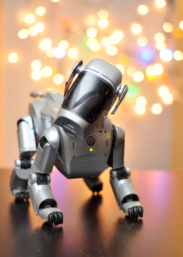 Robotic Dog. Photo by Flickr user Meddygarnet.
