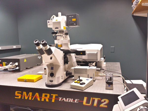 Photograph of microscope in the DePace lab.