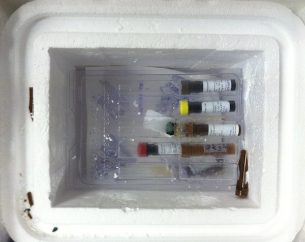 Vials with precious samples were shipped from the US to the lab at the wrong temperature, causing some of the tubes to burst and holding back research.