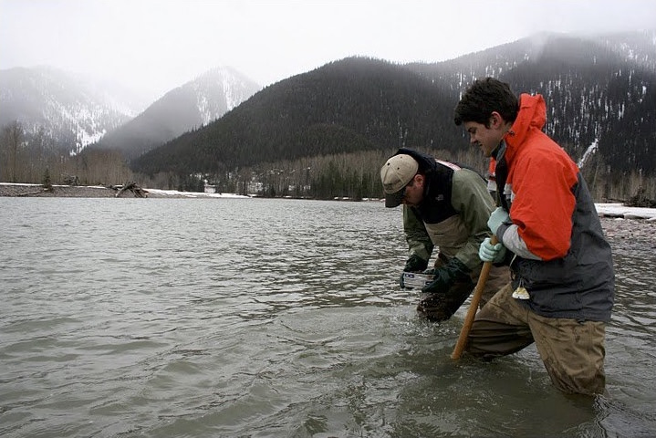 Digging for microbes in river sediment outside Glacier National Park. Photo: Gordon Luikart.
